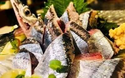 秋刀魚のお刺身